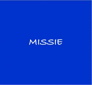 2 missie